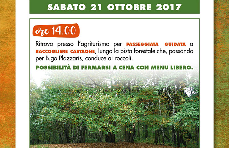 Agriturismo al tulin for Raccogliere castagne
